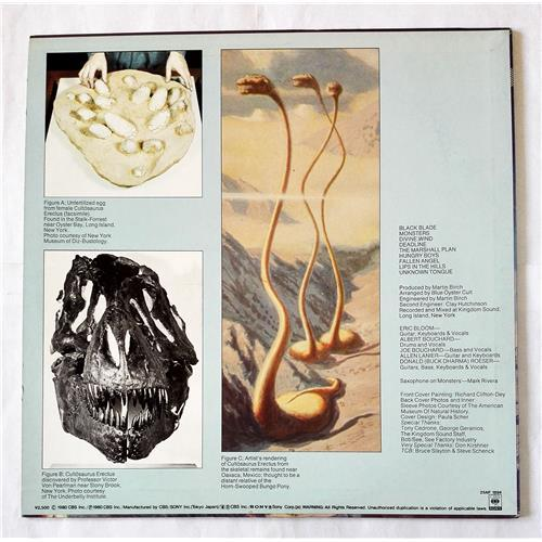 Картинка  Виниловые пластинки  Blue Oyster Cult – Cultosaurus Erectus / 25AP 1894 в  Vinyl Play магазин LP и CD   07047 1