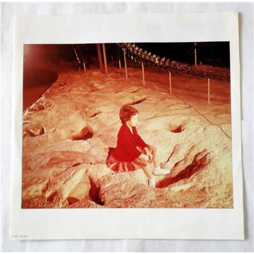 Картинка  Виниловые пластинки  Blue Oyster Cult – Cultosaurus Erectus / 25AP 1894 в  Vinyl Play магазин LP и CD   07047 2