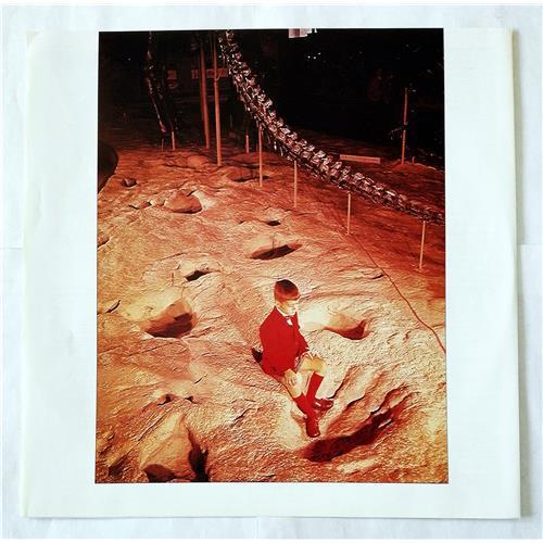Картинка  Виниловые пластинки  Blue Oyster Cult – Cultosaurus Erectus / 25AP 1894 в  Vinyl Play магазин LP и CD   07047 3
