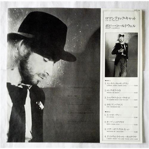 Картинка  Виниловые пластинки  Bobby Caldwell – Cat In The Hat / 25AP 1748 в  Vinyl Play магазин LP и CD   07378 2