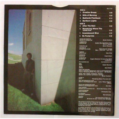 Картинка  Виниловые пластинки  Bruce Cockburn – Dancing In The Dragon's Jaws / BXL1-7747 в  Vinyl Play магазин LP и CD   04827 2