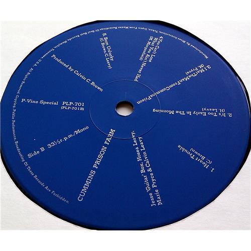 Картинка  Виниловые пластинки  Calvin Leavy – Cummins Prison Farm / PLP-701 в  Vinyl Play магазин LP и CD   07066 7