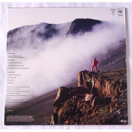 Картинка  Виниловые пластинки  Clarence Clemons – Hero / CBS 26743 в  Vinyl Play магазин LP и CD   06524 1