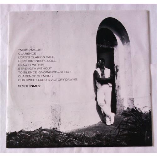 Картинка  Виниловые пластинки  Clarence Clemons – Hero / CBS 26743 в  Vinyl Play магазин LP и CD   06524 2