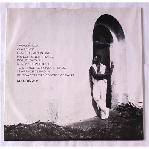 Картинка  Виниловые пластинки  Clarence Clemons – Hero / CBS 26743 в  Vinyl Play магазин LP и CD   06525 2