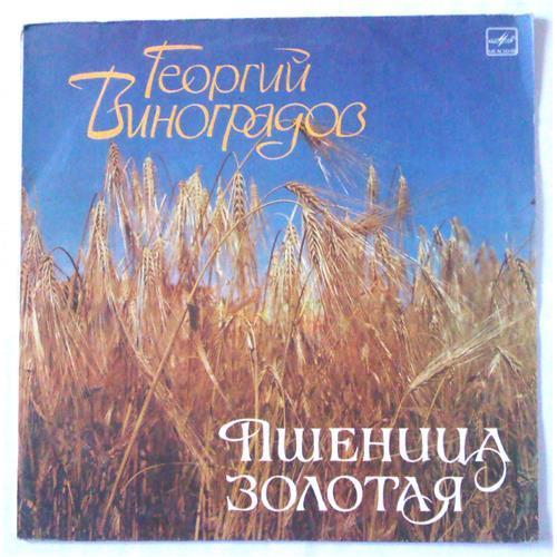 Виниловые пластинки  Георгий Виноградов – Пшеница Золотая / М60 47745 008 в Vinyl Play магазин LP и CD  05183