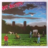 Mr. Mister – Welcome To The Real World / RPL-8323