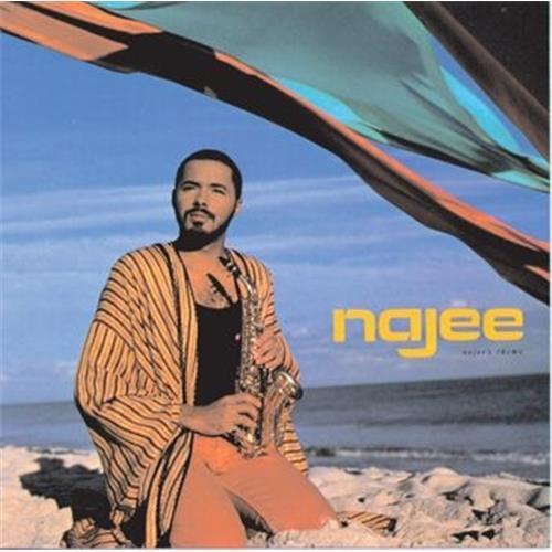 Виниловые пластинки  Najee – Najee's Theme / ST-17241 в Vinyl Play магазин LP и CD  02766