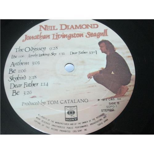 Картинка  Виниловые пластинки  Neil Diamond – Jonathan Livingston Seagull (Original Motion Picture Sound Track) / SOPO 1 в  Vinyl Play магазин LP и CD   04016 9