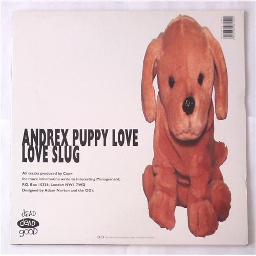 Картинка  Виниловые пластинки  Orange Deluxe – Love Slug / Andrex Puppy Love / Good 38 T в  Vinyl Play магазин LP и CD   05644 1