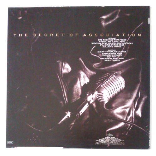 Картинка  Виниловые пластинки  Paul Young – The Secret Of Association / 28-3P-600 в  Vinyl Play магазин LP и CD   05621 1