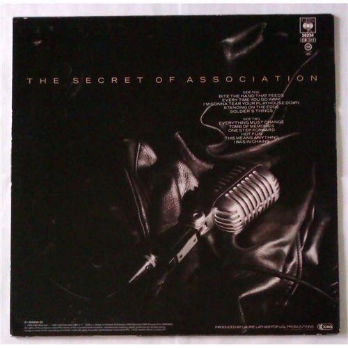 Картинка  Виниловые пластинки  Paul Young – The Secret Of Association / CBS 26234 в  Vinyl Play магазин LP и CD   04798 1