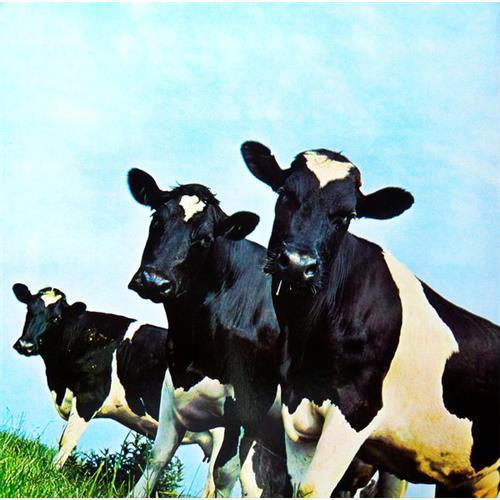 Картинка  Виниловые пластинки  Pink Floyd – Atom Heart Mother / PFRLP5 / Sealed в  Vinyl Play магазин LP и CD   06482 1