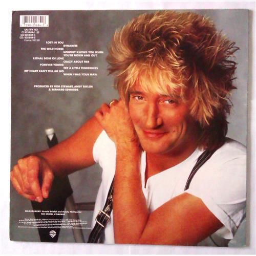 Картинка  Виниловые пластинки  Rod Stewart – Out Of Order / 925 684-1 в  Vinyl Play магазин LP и CD   04660 1