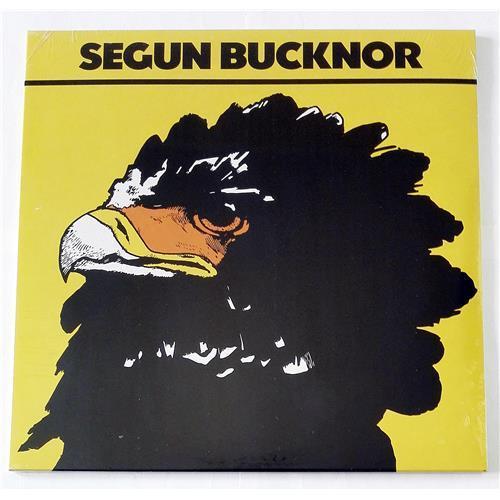 Виниловые пластинки  Segun Bucknor – Segun Bucknor / PMG090LP / Sealed в Vinyl Play магазин LP и CD  09083