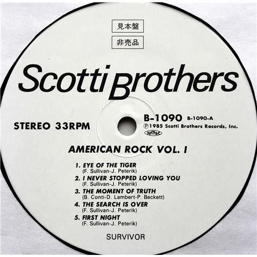 Картинка  Виниловые пластинки  Survivor, John Cafferty And The Beaver Brown Band – American Rock Vol. 1 / B-1090 в  Vinyl Play магазин LP и CD   07500 2
