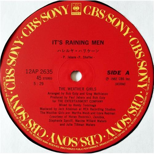Картинка  Виниловые пластинки  The Weather Girls – It's Raining Men / 12AP 2635 в  Vinyl Play магазин LP и CD   08542 2