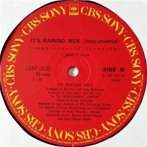 Картинка  Виниловые пластинки  The Weather Girls – It's Raining Men / 12AP 2635 в  Vinyl Play магазин LP и CD   08542 3