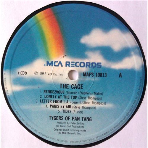Картинка  Виниловые пластинки  Tygers Of Pan Tang – The Cage / MAPS 10813 в  Vinyl Play магазин LP и CD   04815 4