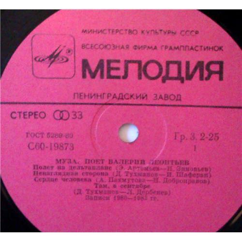 Картинка  Виниловые пластинки  Валерий Леонтьев – Муза / С60 19873 006 в  Vinyl Play магазин LP и CD   03850 2