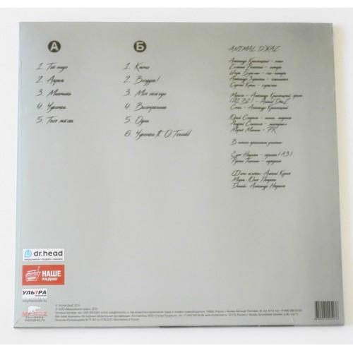 Картинка  Виниловые пластинки  Animal ДжаZ – Время любить / MR 19073 LP / Sealed в  Vinyl Play магазин LP и CD   09844 1