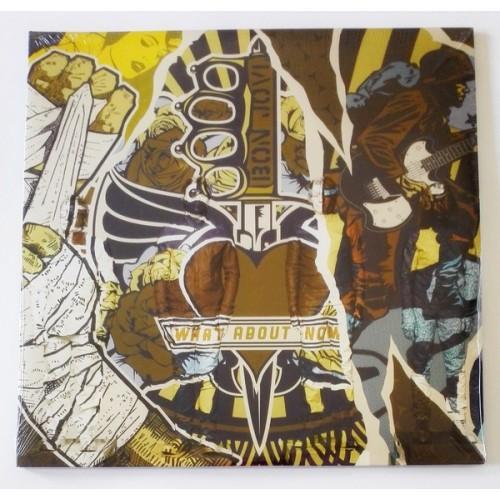 Виниловые пластинки  Bon Jovi – What About Now / B0021977-01 / Sealed в Vinyl Play магазин LP и CD  09757