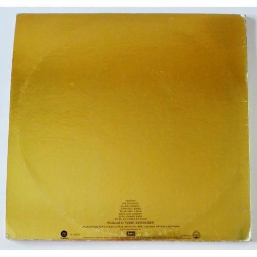Картинка  Виниловые пластинки  Grand Funk Railroad – We're An American Band / R 132473 в  Vinyl Play магазин LP и CD   09624 3