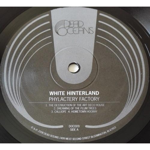 Картинка  Виниловые пластинки  White Hinterland – Phylactery Factory / DOC009 в  Vinyl Play магазин LP и CD   09831 4