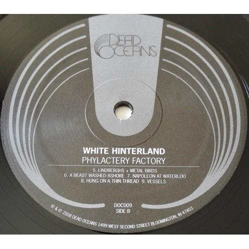 Картинка  Виниловые пластинки  White Hinterland – Phylactery Factory / DOC009 в  Vinyl Play магазин LP и CD   09831 3