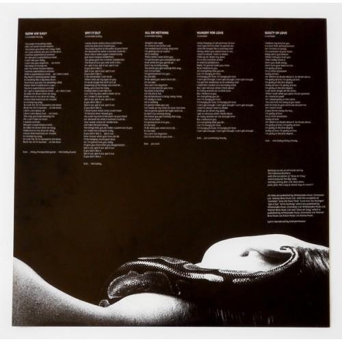 Картинка  Виниловые пластинки  Whitesnake – Slide It In / 25AP 2680 в  Vinyl Play магазин LP и CD   09837 5